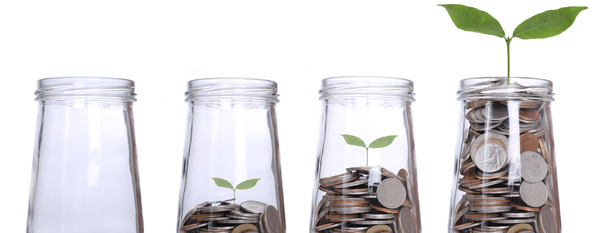 Four glass vases each one accumulating more money as they go on as well as a little green sprout growing bigger and bigger in each vase